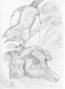Shadow, drawn by Lydia 001